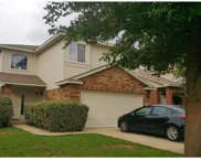 449 Grey Feather Ct, Round Rock image