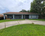 142 Hollyhock Court, Kissimmee image