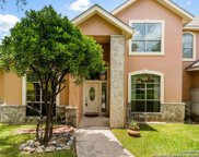 9819 Cash Mountain Rd, Helotes image