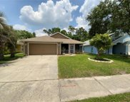 10211 Dean Point Place, Orlando image