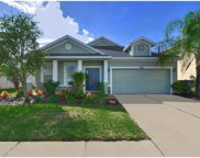 3715 Crystal Dew Street, Plant City image