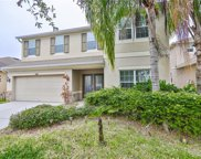 5808 Tulip Flower Drive, Riverview image