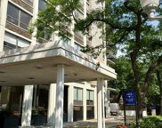 1455 North Sandburg Terrace Unit 708B, Chicago image