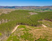 473 County Road 207, Collinsville image