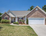 205 Wild Thorn Lane, Greenville image