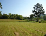 Tract 4 County Road 105, Athens image