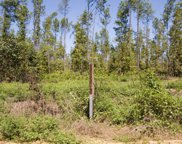 Tract 24 Pollett Road, Bartow image