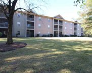 562 Blue Stem Dr. Unit 54-N, Pawleys Island image