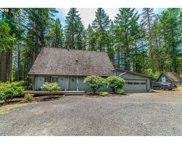 32110 DEBERRY  RD, Creswell image