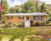 13617 Lisa Dr, Mccalla image