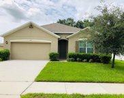 805 Oak Hollow Loop, Deland image