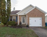 10912 Hollyview Ct, Louisville image
