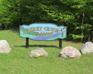 11278 Berry Creek Valley Rd, #19, Petoskey image