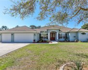 13194 Amber Woods Street, Spring Hill image
