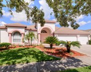 19218 Inlet Cove Court, Lutz image