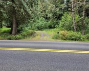 4703 Ames Lake Carnation Road NE, Redmond image
