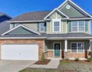 1097 Buttercup Circle, Blythewood image