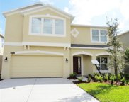 10716 Pictorial Park Drive, Tampa image