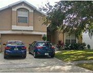 5325 Pepper Brush Cove, Apopka image