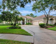 17817 Osprey Pointe Place, Tampa image