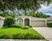 25406 Lexington Oaks Boulevard, Wesley Chapel image