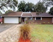6712 Drifting Sands Road, Temple Terrace image