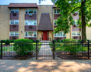 1627 West Touhy Avenue Unit 303, Chicago image