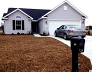 248 Hickory Springs Ct., Conway image