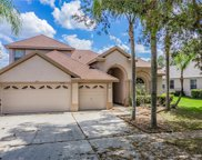 10234 Deercliff Drive, Tampa image