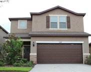 5939 Sweet Birch Dr Drive, Riverview image