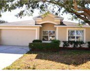 12107 Pepper Creek Court, Riverview image