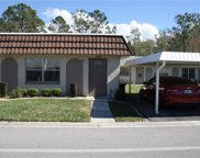 11812 Carissa Lane Unit 11812, New Port Richey image