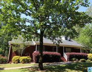 825 Deer Trace Rd, Pell City image