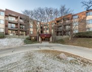 440 Raintree Court Unit 1T, Glen Ellyn image