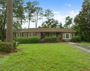 3611 Stumpy Court, Wilmington image