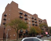 1000 East 53Rd Street Unit 412S, Chicago image