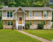 201 Winterberry Ln, Trussville image
