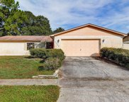 4309 Hollow Hill Drive, Tampa image