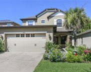 7864 Tuscany Woods Drive, Tampa image