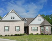 251 Ivy Woods Court, Fountain Inn image