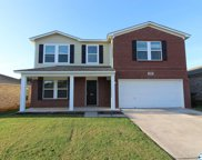 144 Olympia Drive, Meridianville image