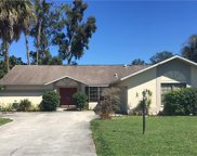 19185 Pine Run LN, Fort Myers image