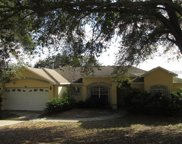 690 Meadow Park Drive, Minneola image