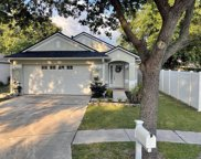 11104 N Elsinore Court, Riverview image