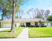 11507 Moffat Place, Tampa image