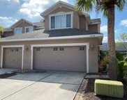 6208 Parkside Meadow Drive, Tampa image