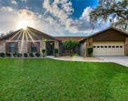 1431 Clarion Drive, Valrico image