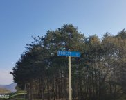 FOREST DRIVE, Stanley image