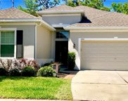 11311 Thames Fare Way, Lithia image