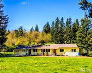 10407 Old Highway 99  SE, Olympia image